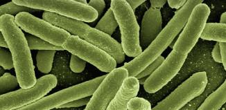 Problemy gastryczne mogą mieć związek z obciążeniem organizmu toksynami.